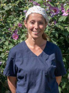 Dentiste Lège Cap-Ferret